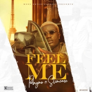 Pa Brymo - Feel Me ft. Slimcase (Prod. By Cracker)